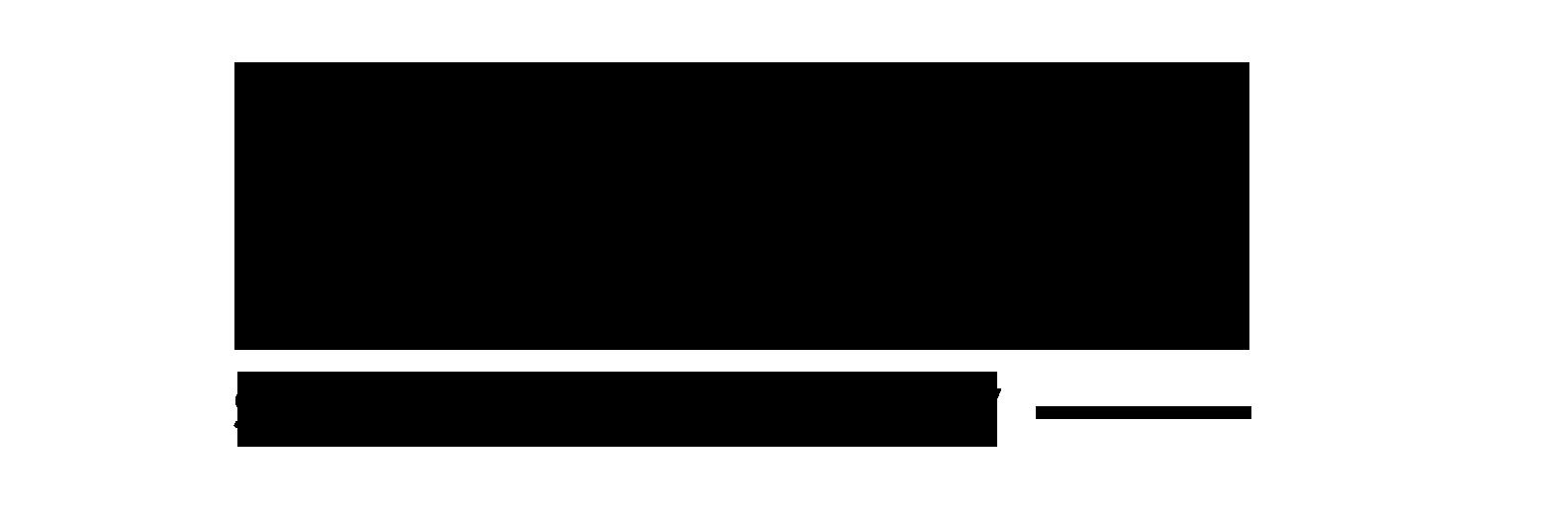 logo_nano2